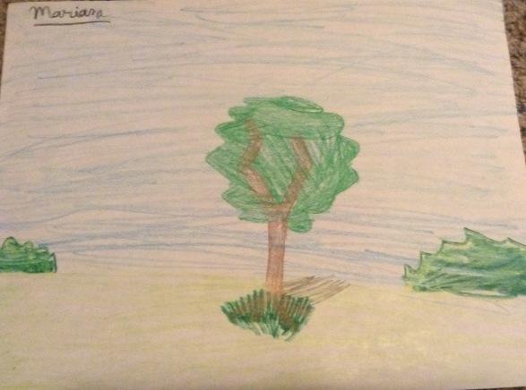 mari tree